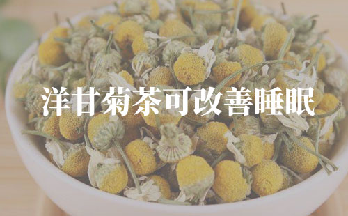 洋甘菊茶可改善睡眠