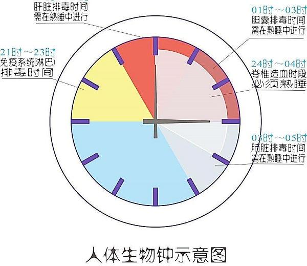 用重置生物钟与克服时差来改善睡眠